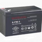 باتری MAKELSAN 6-FM-9